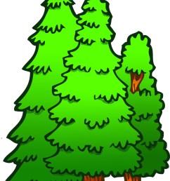 1255x1800 pine tree clipart forest tree [ 1255 x 1800 Pixel ]