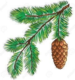 1300x1300 pine branch clipart [ 1300 x 1300 Pixel ]