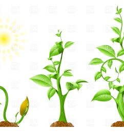 1200x843 plant growth royalty free vector clip art image [ 1200 x 843 Pixel ]