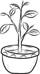 plant clipart pot earthen clip stem plantas imagens vector clipartmag artista deste conteudo semelhantes