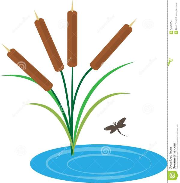 pond clipart free