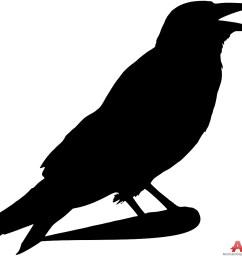 999x933 crow outline clip art at taco zone valve wiring diagram [ 999 x 933 Pixel ]