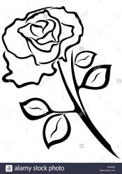 Rose Black And White Outline Free download on ClipArtMag