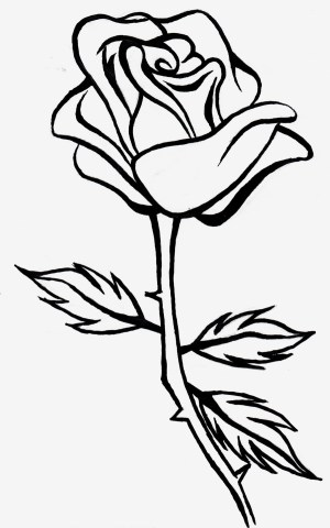 rose drawing clipart roses outline line drawings clip simple flower 3d clipartmag paintingvalley