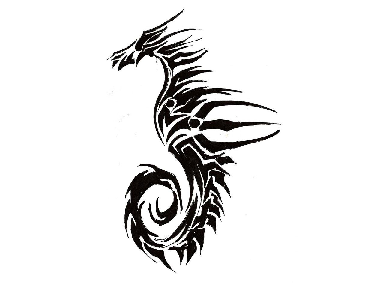 Seahorse Black And White