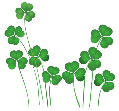 small resolution of 2500x2338 st patricks day shamrocks decor png clipartu200b gallery