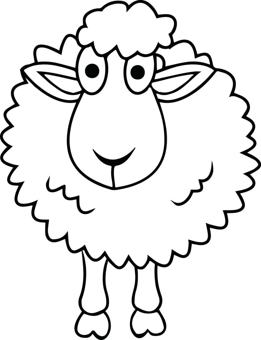sheep drawings for kids  free download on clipartmag