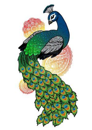 peacock drawings drawing simple easy colorful draw colourful colour peacocks bird step deviantart lil soul dark clipart wall cartoon pfau