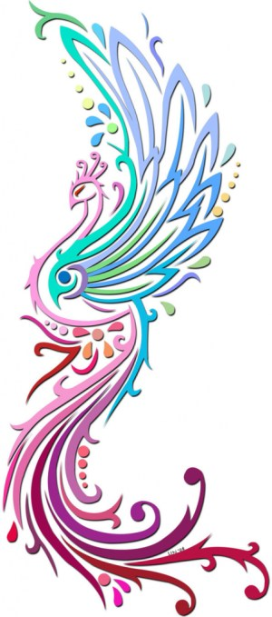 peacock drawing colorful simple colourful drawings stencil peacocks feather clipart colors designs wonder clip deviantart sketches patterns cliparts tattoo clipartmag