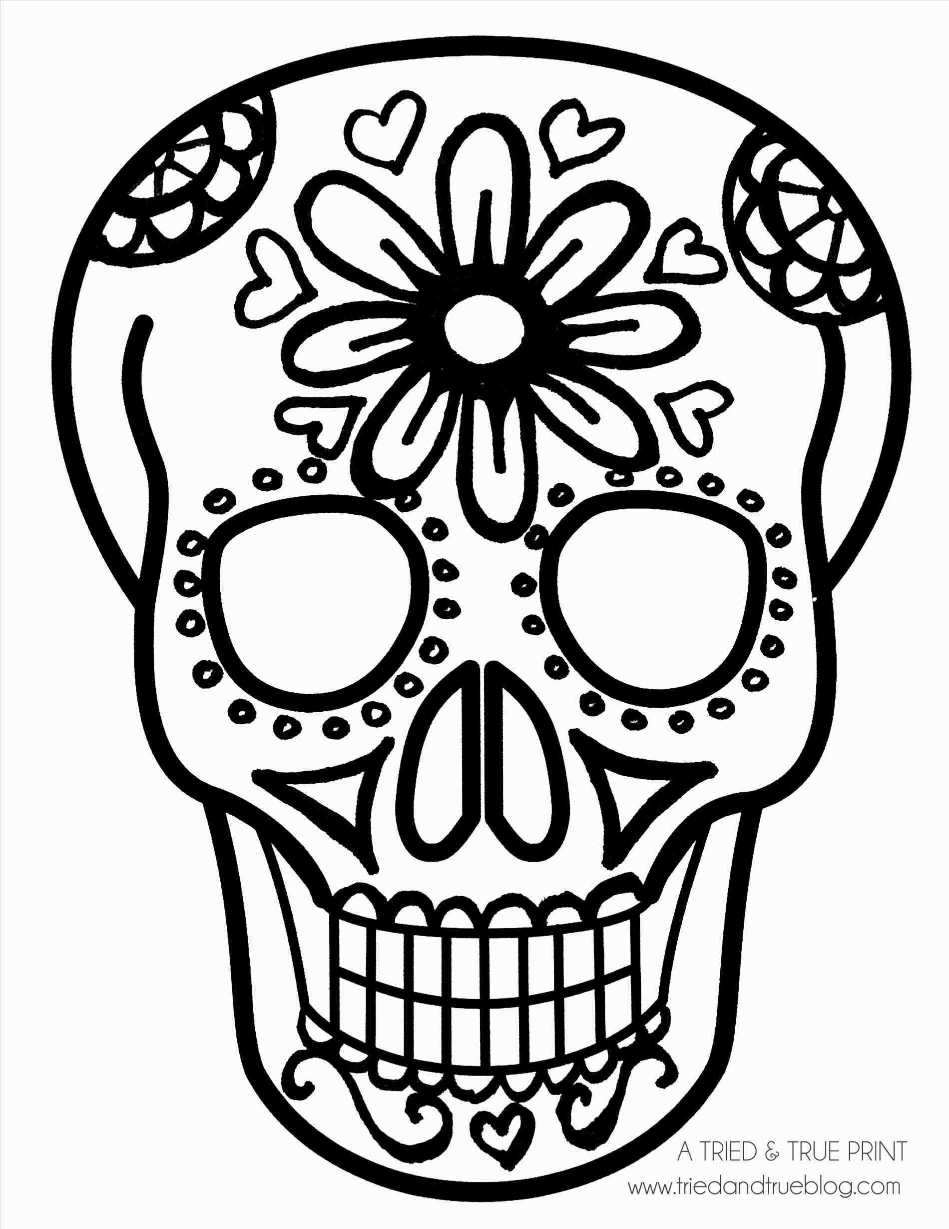 Skull Pics Download Clipart