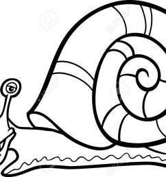1300x912 mollusc clipart black and white [ 1300 x 912 Pixel ]