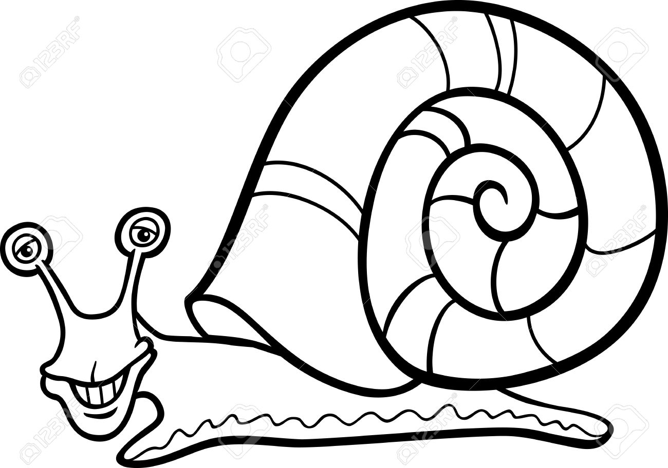 hight resolution of 1300x912 mollusc clipart black and white