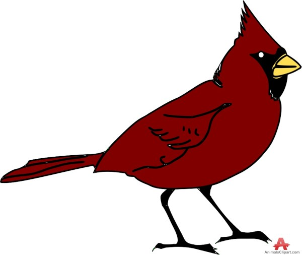 st louis cardinals clipart free