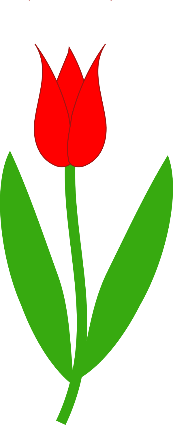 Stem And Leaf Clipart Free