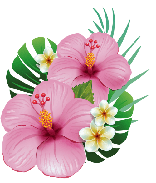 small resolution of 875x1024 hawaiian aloha tropical flower hawaiian moana