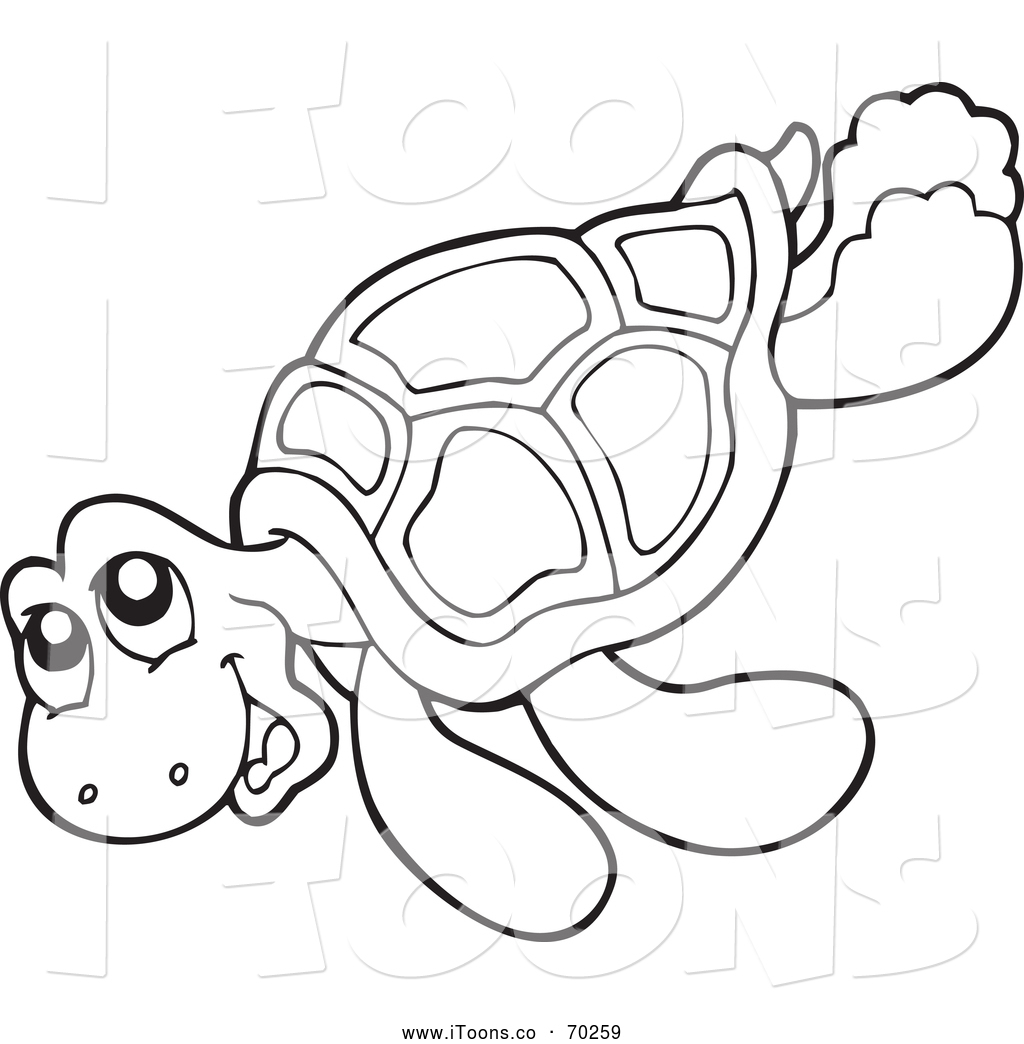Turtle Outlines