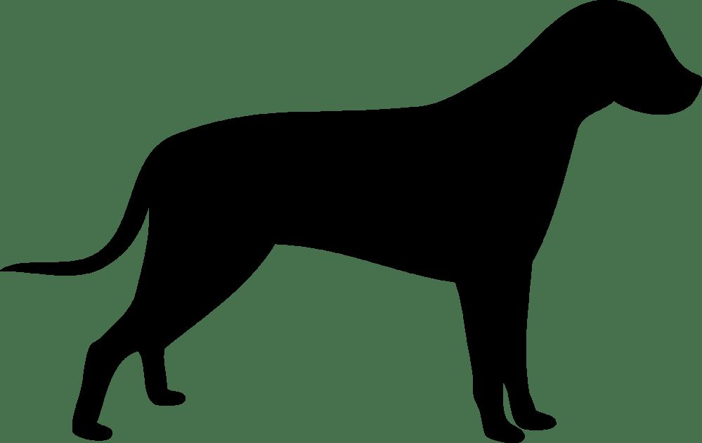 medium resolution of 2201x1388 dog outline