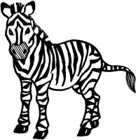 Zebra Coloring Pages   Free download on ClipArtMag