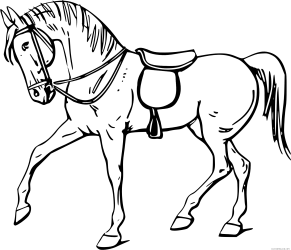 Quarter Horse Animal Free Black White Clipart Images Outline Of A Horse 1979x1693 Png Clipart Download