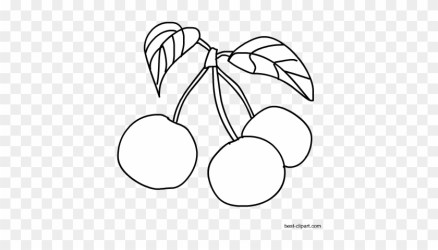 Black And White Cherries Outline Clip Art Rainier Cherry Free Transparent PNG Clipart Images Download