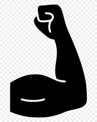 Bicep Workout Muscle Fitness Gym Comments Fitness Icon Png Free Transparent PNG Clipart Images Download