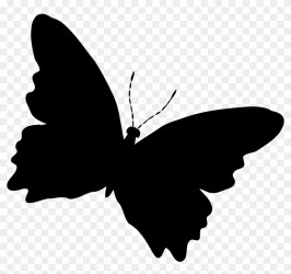 Butterfly Silhouette Cliparts Free Download Clip Art Silhouette Butterfly Free Transparent PNG Clipart Images Download