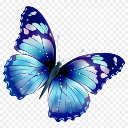 Pin By Luna Christensen On Clipart Transparent Transparent Background Butterfly Clipart Free Transparent PNG Clipart Images Download