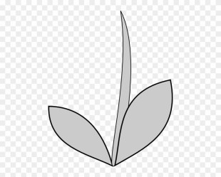 Flower With Stem Outline Flower Stems Clipart Free Transparent PNG Clipart Images Download