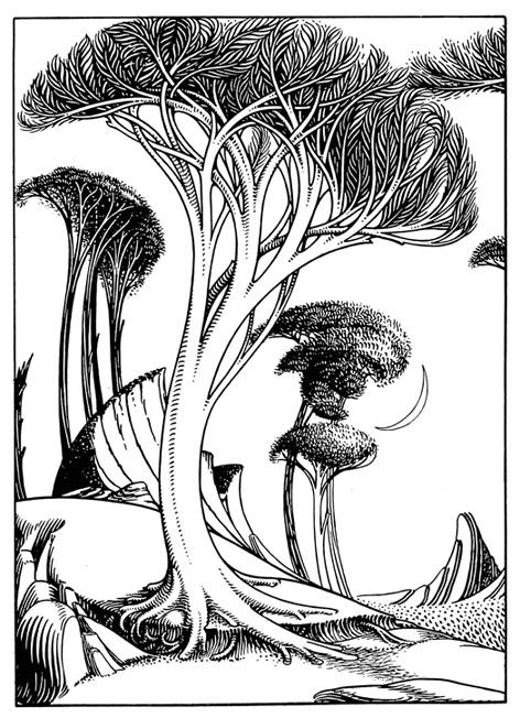 Art Nouveau Tree : nouveau, Nouveau, Border, Gallery