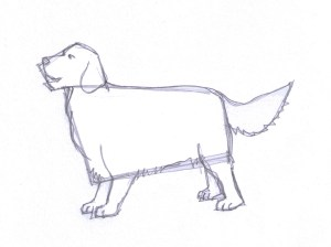 dog pencil drawing draw guidelines anymore erase finally don need lines clipartqueen