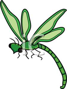 green damselfly clip art