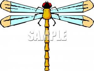 clip art yellow dragonfly
