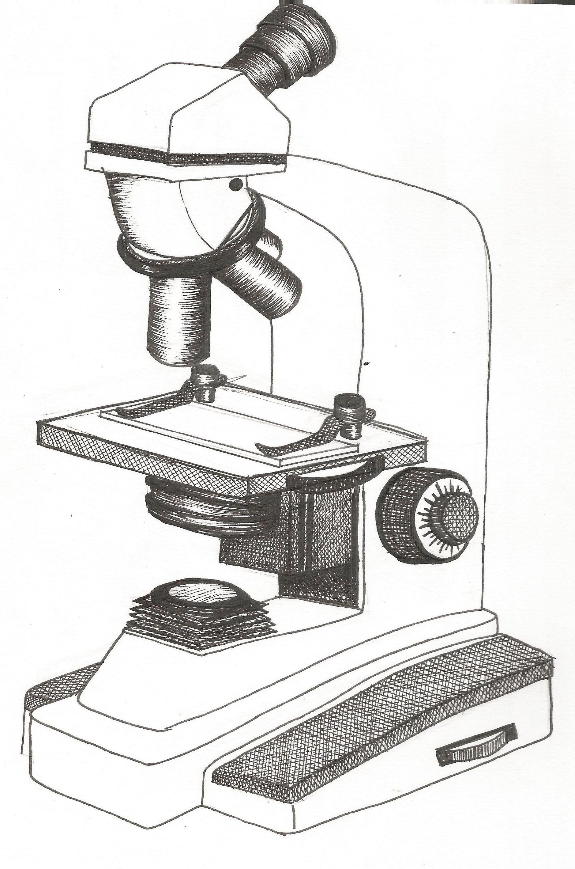 Microscope Drawing