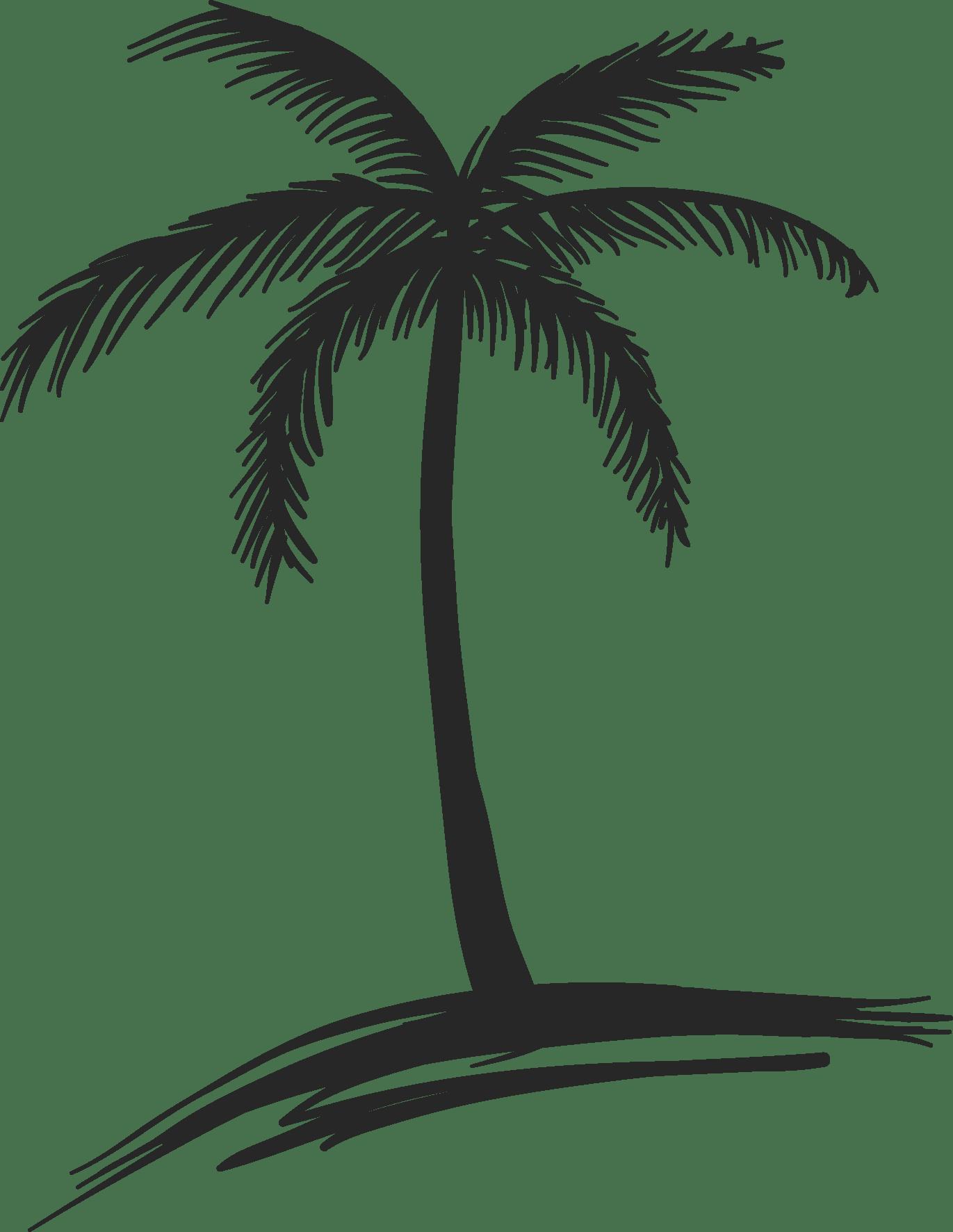 Palm Trees Drawings