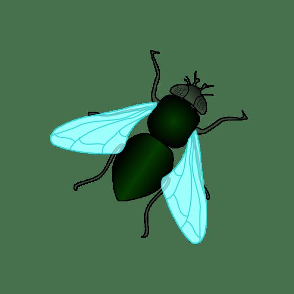 fly clip art free