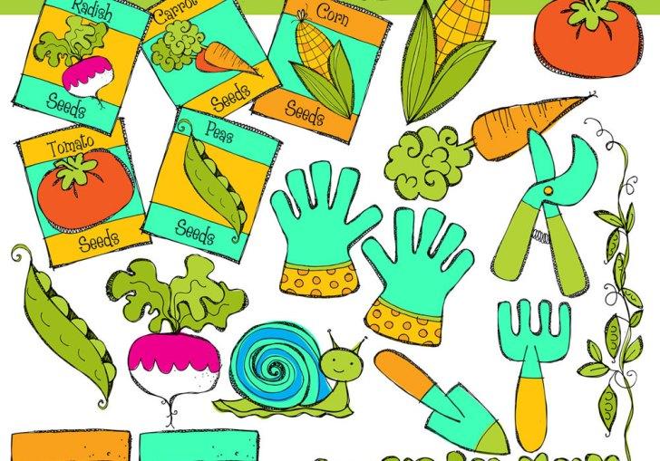 Vegetable Garden Pictures For Kids