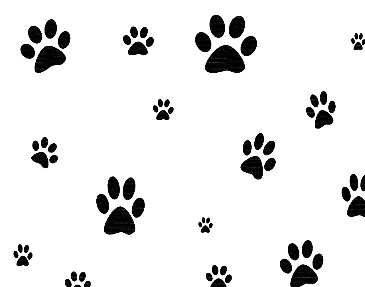 Dog Borders