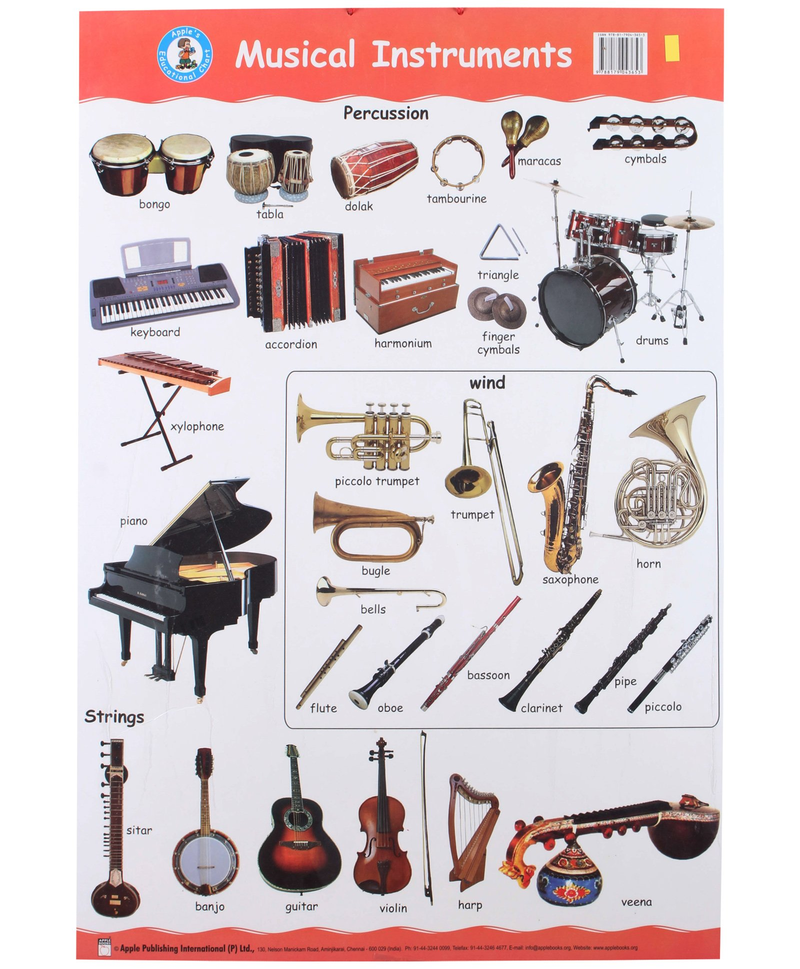 Music Instruments Names