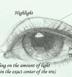 eye diagram jeannie vodden art [ 1800 x 840 Pixel ]