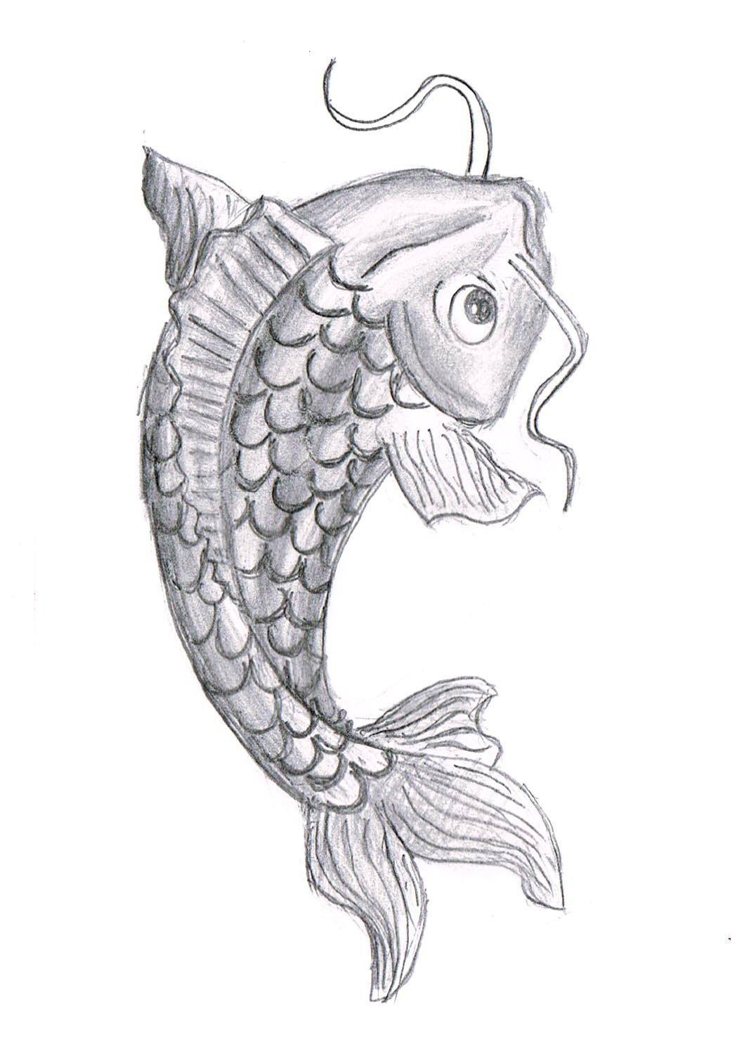 Fish Drawing Pictures
