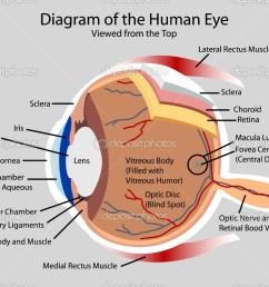 eye diagram viralnova [ 1024 x 791 Pixel ]