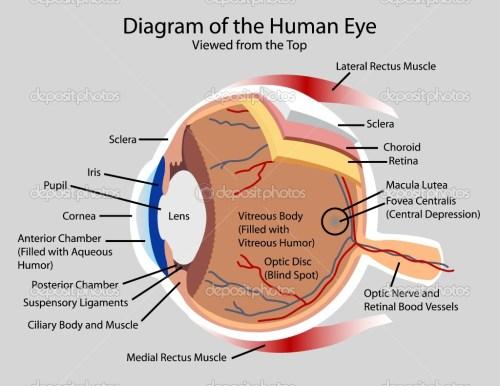 small resolution of eye diagram viralnova