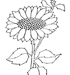 black and white sun flower clip art embroidery pattern sunflower  [ 901 x 1350 Pixel ]