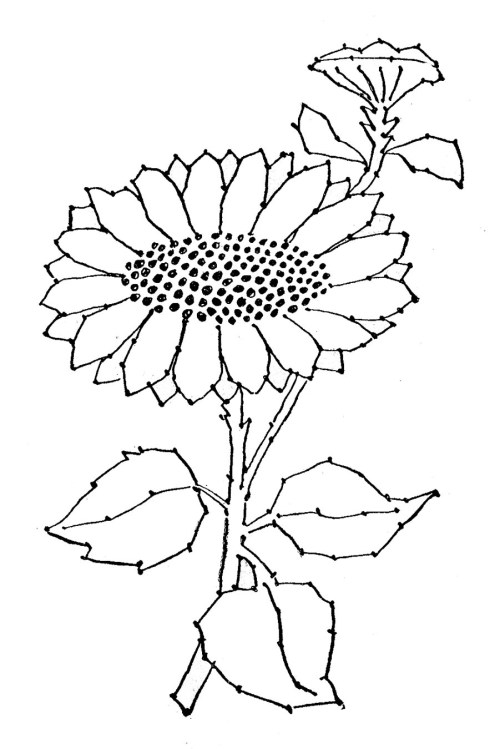 small resolution of black and white sun flower clip art embroidery pattern sunflower