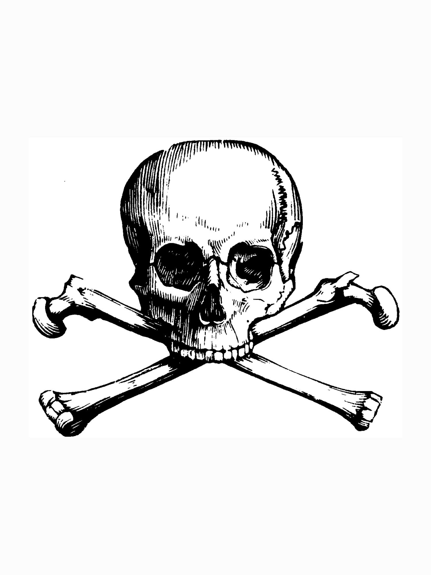 Skull And Crossbones Images Free