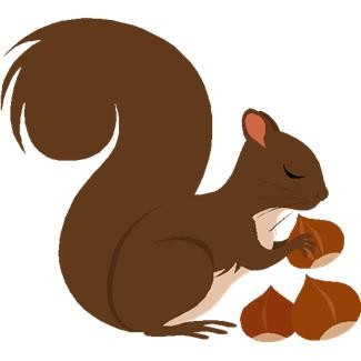 Image result for squirrels with nuts