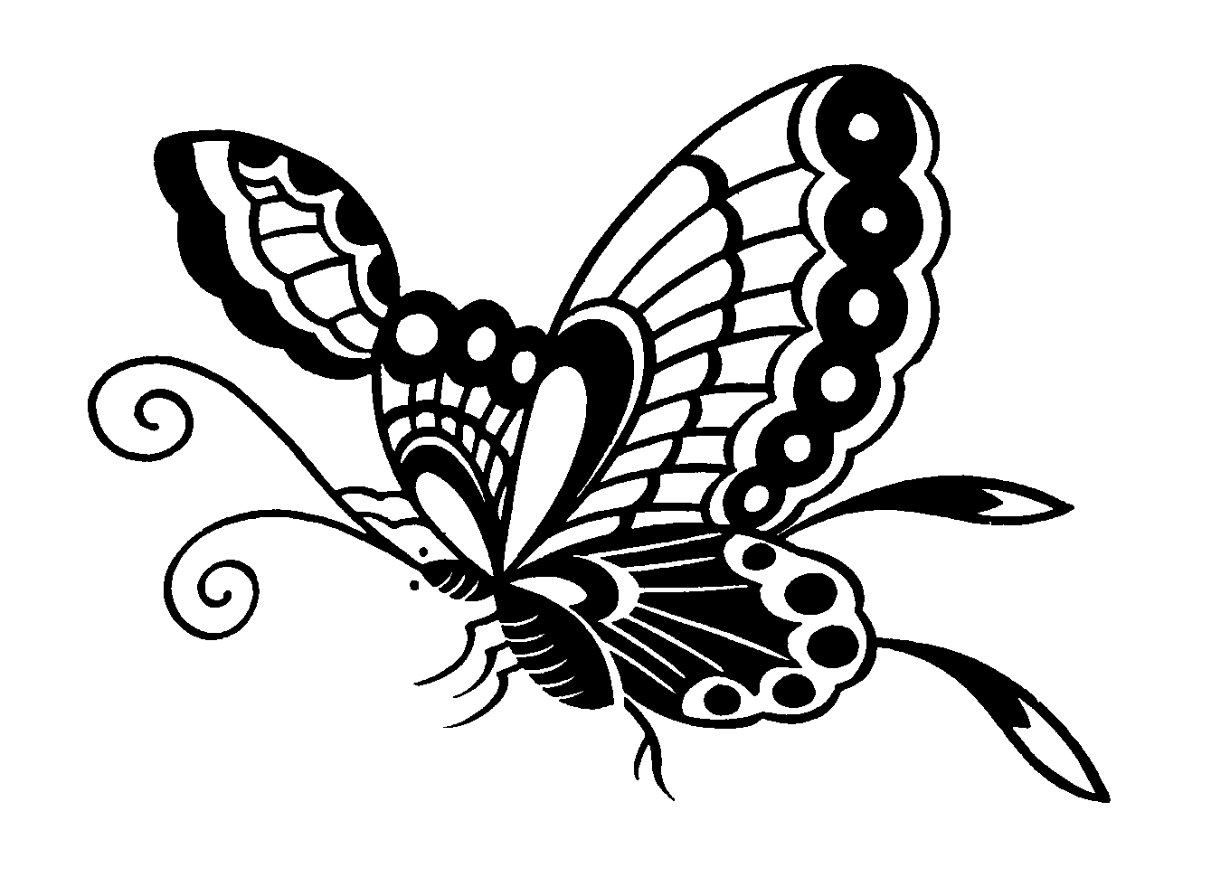 Clip Art Butterfly Black And White
