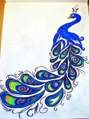 peacock drawing simple colorful cliparts easy drawings draw peacocks peacok pretty doodles drawn fun beauty doodle