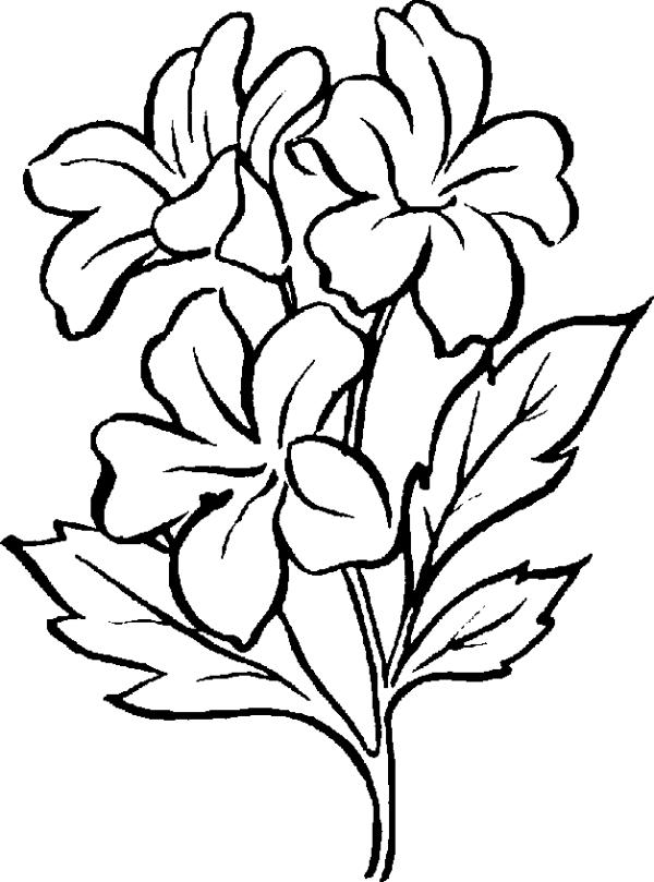 free clip art flowers black