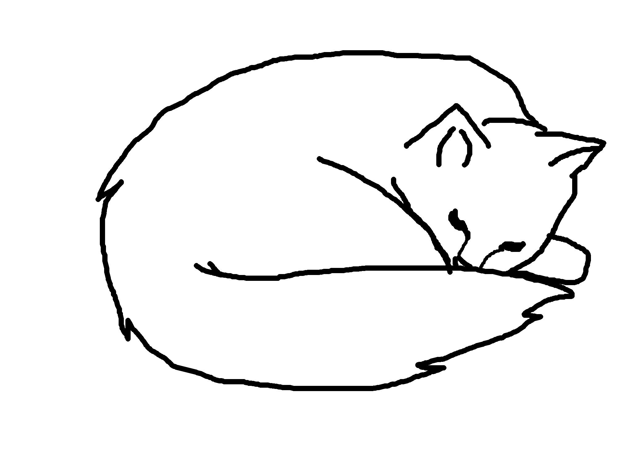 Line Art Cat